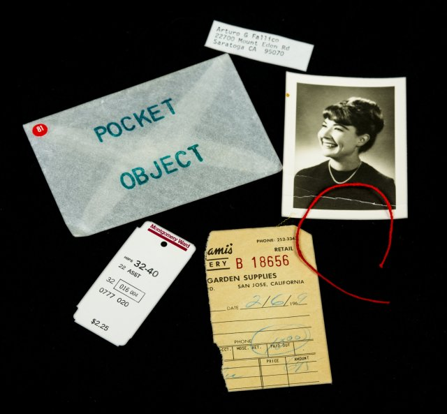 Arturo Fallilco Pocket_Object_81